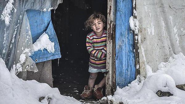 Musim dingin di palestina.jpg