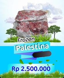 frozen palestina.png