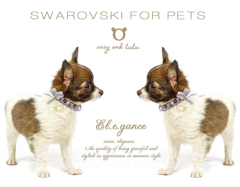 Roxy and LuLu - Trendy Posh Swarovski Pet Collars