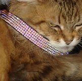 Roxy and LuLu Swarovski Crystal Cat Collar