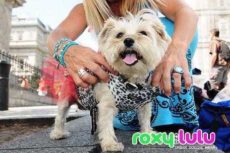 ROXY AND LULU - URBAN DOGGIE WEAR