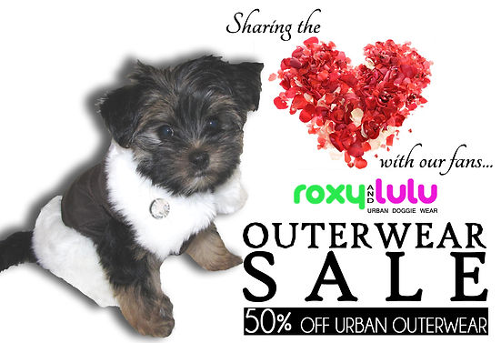 Roxy and LuLu - 50 % OFF - WINTER-SALE