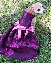 RL Couture Magenta Blossoms Dog Dress