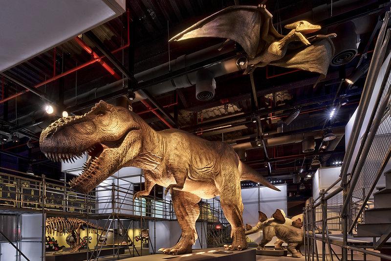 DINOLAB恐龍實驗室-05.jpg