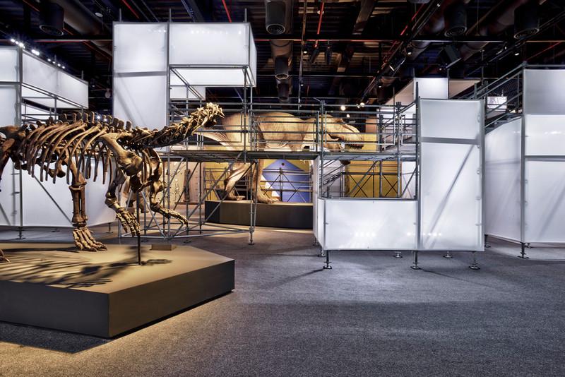 DINOLAB恐龍實驗室-78.jpg