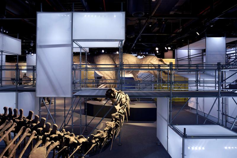 DINOLAB恐龍實驗室-63.jpg