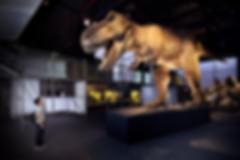 DINOLAB恐龍實驗室-01.jpg