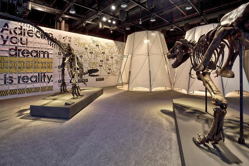 DINOLAB恐龍實驗室-08.jpg