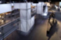 DINOLAB恐龍實驗室-53.jpg