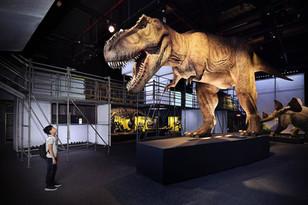 GQ|屬於大人的恐龍展!「#DINOLAB恐龍實驗室-復活任務」暑假登場