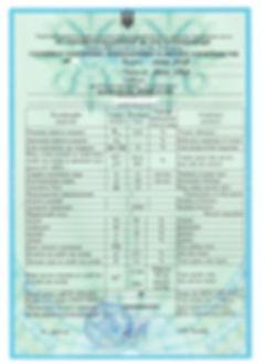Сертификат ДГ 13-100.jpg