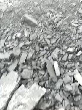 Уголь марки ДГ с шахты для рассева в городе Одесса