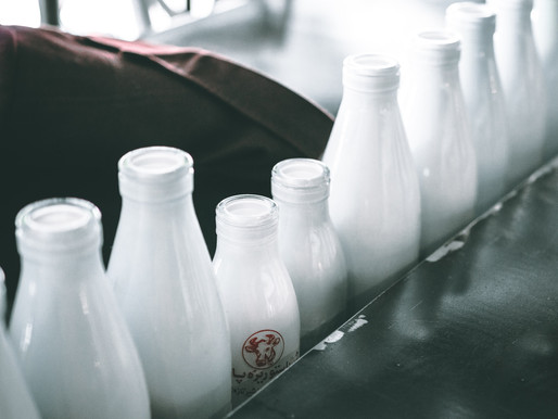 Is Raw Milk Healthy For You During This Pandemic?