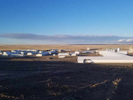 Montana Aviary & Pullet Barn COMPLETE!