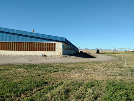 Wolf Creek, MT Hog Barn