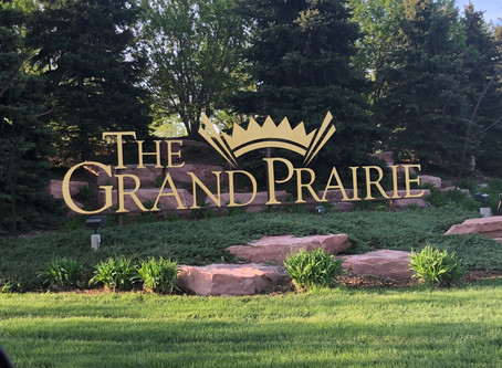 Another LOT SOLD! | Grand Prairie #8