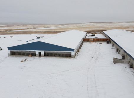 Sow Barn Addition | Augusta, MT