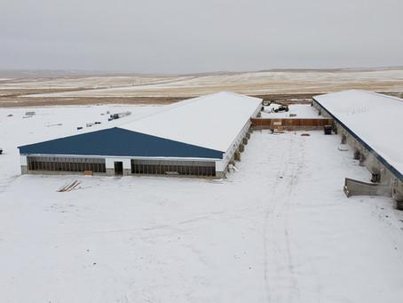 Sow Barn Addition | Augusta, MT