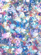 Abstract Daisies 1 Original.JPG