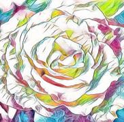 Watercoloer Rose 1-6819.jpg