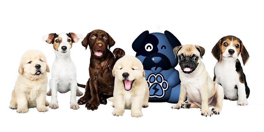 Perros con Dido.jpg
