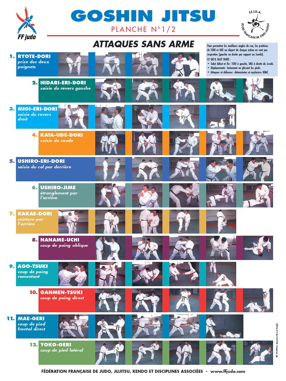 106fe67a44-disciplines-jujitsu-affiches-