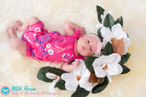 newborn baby photo session poway