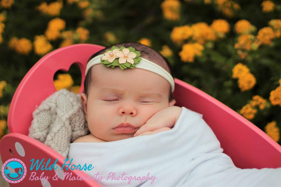 sleeping with flowers