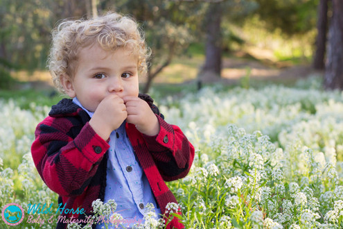 outdoor toddler photo session san diego