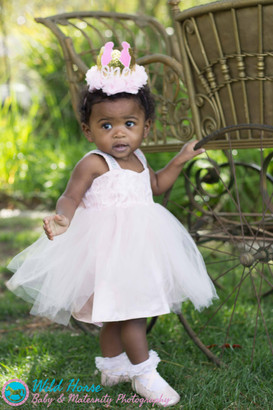 Princess 1st birthday with Carriage phot