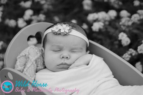 sleeping in the flowers newborn outdoor photoshoot