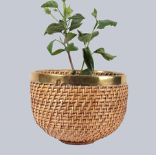 Egg shape planter