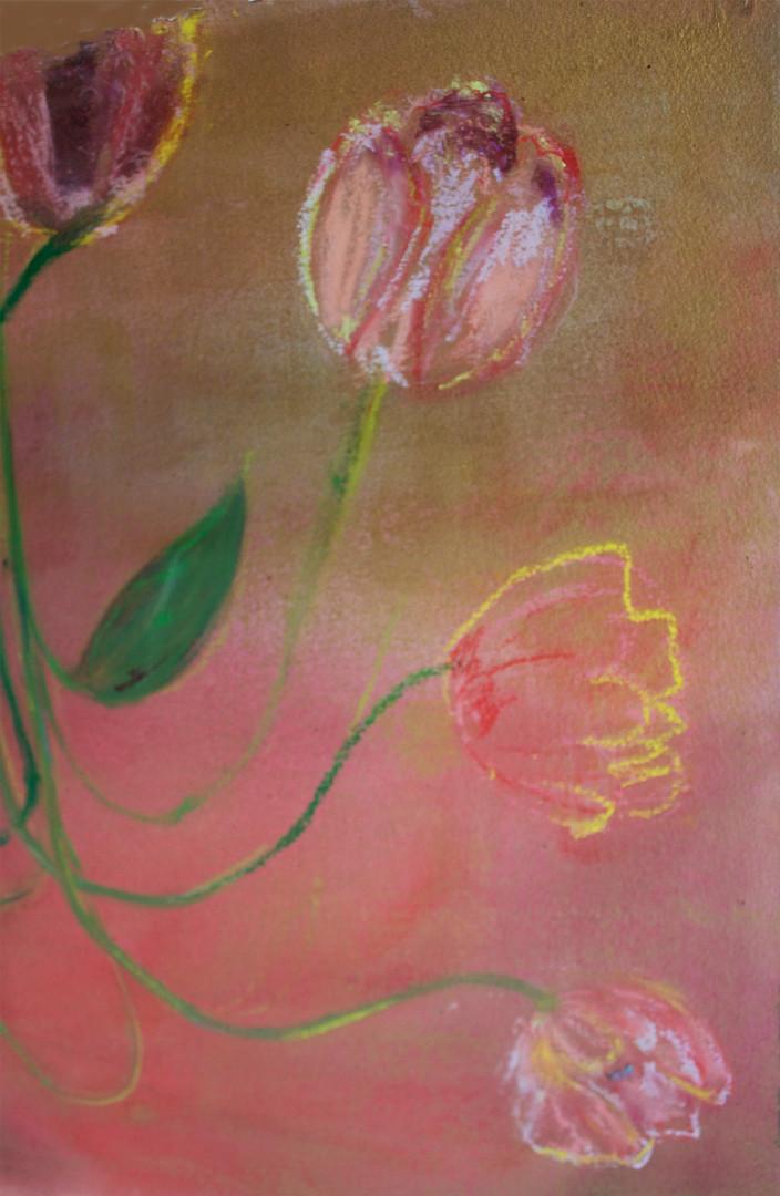 "detail, ""Tulips"""