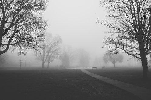 """Riverside Park Fog 2 12x18"""" Framed"""