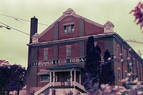 Print Viroqua Book Store. LomoChrome Purple