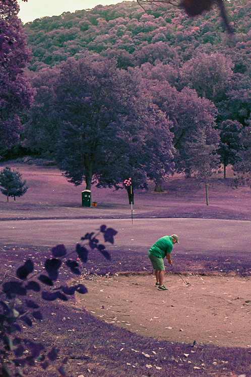 Canvas Forest Hills Golf, La Crosse. LomoChrome Purple