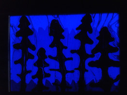 Nocturnal Landscape 6