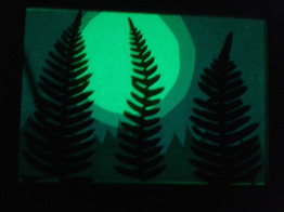 Nocturnal Landscape 10