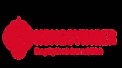 KNA Kvgr logo.png