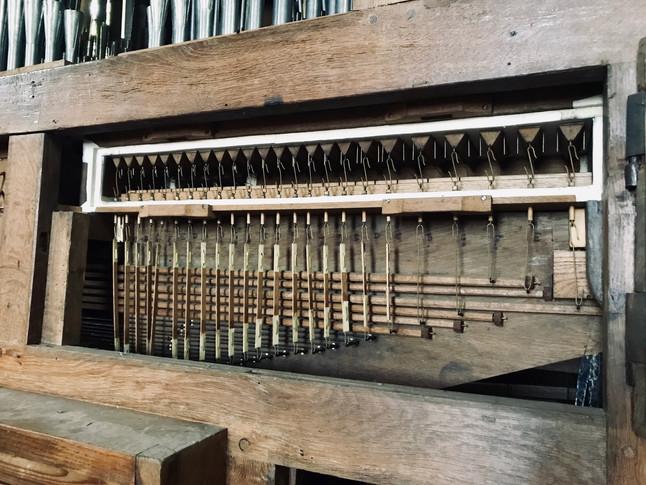 Laye de grand-orgue ouverte