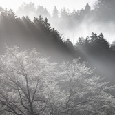 Urahoro,Hokkaido