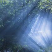 Child of God pond,Hokkaido