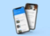 audit-app-mockup.png