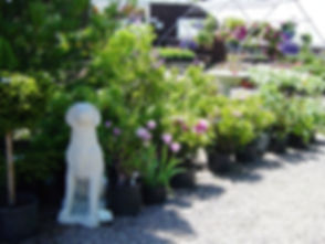 Garden Center Display.jpg