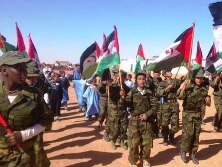Algérie : Enfants soldats du POLISARIO à Tindouf