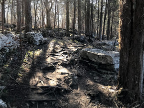 Hiking in Long Hunter State Park