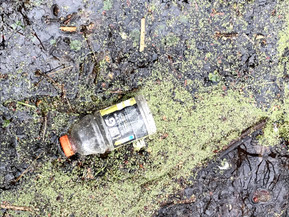 Leave No Trace in Our Parks: Part 1