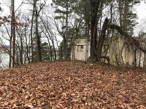 Exploring an Abandoned Camp at Nathan Bedford Forrest State Park