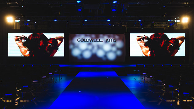 Goldwell   2017 colorzoom