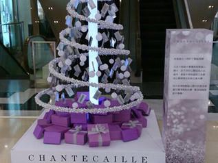Chantecaille | 聖誕樹設計